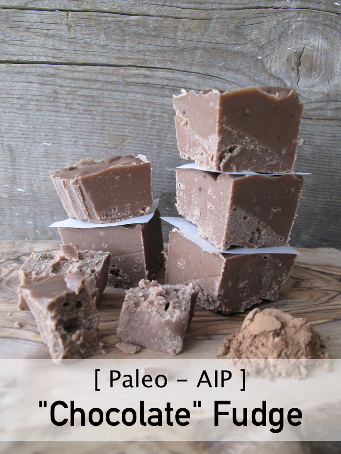 "AIP / Paleo ""Chocolate"" Carob Fudge - A Squirrel in the Kitchen"