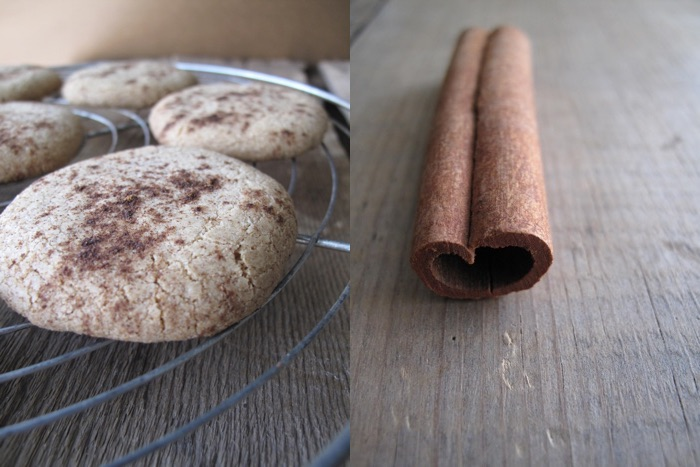AIP / Paleo Crispy Cinnamon Thin Cookies