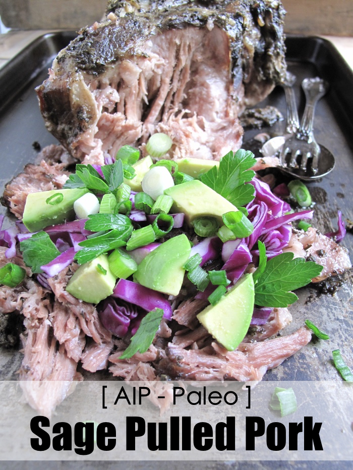 AIP / Paleo Sage Pulled Pork - Slow Cooker Recipe [ A Squirrel in the Kitchen ]