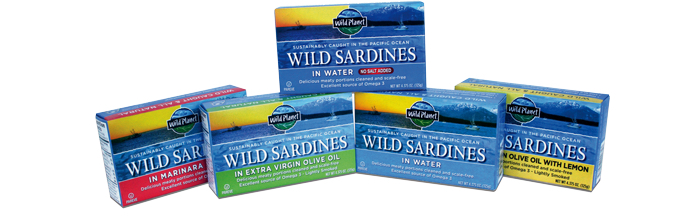 The scoop on canned sardines and the easiest sardine salad ever!