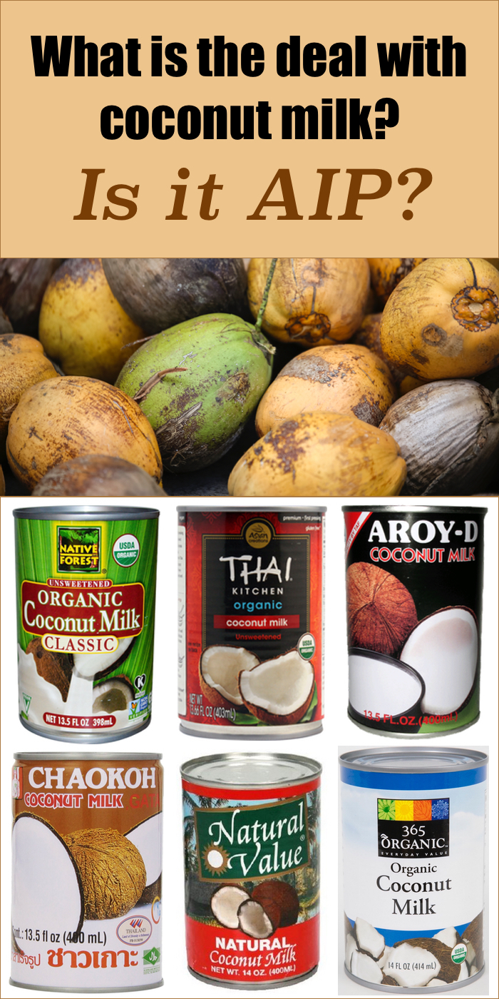 What's the Deal with Coconut Milk? Is it even Paleo AIP?