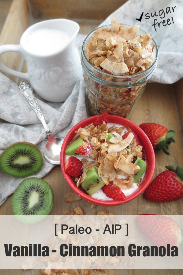 Vanilla and Cinnamon Breakfast Granola (Paleo - AIP - Sugar Free) - A Squirrel in the Kitchen