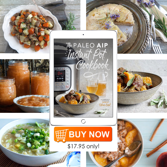 The Paleo AIP Instant Pot Cookbook Review