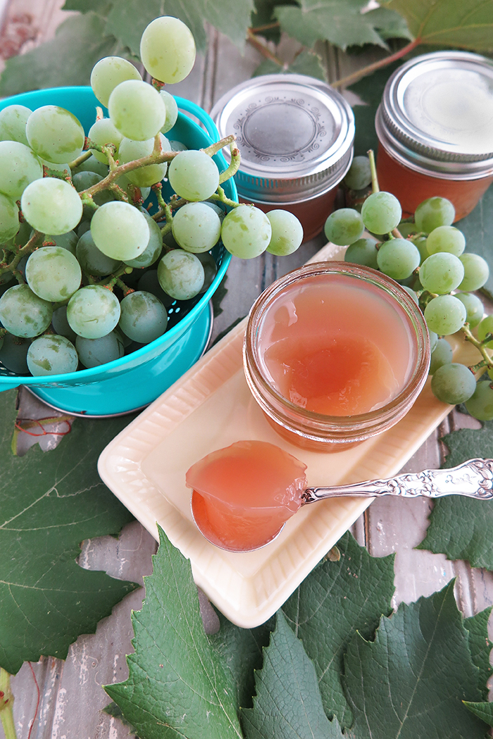Sugar Free White Grape and Ginger Jelly with Pomona Pectin (Paleo, AIP)