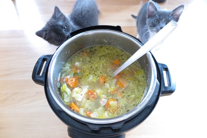 ip_chicken_soup_cats