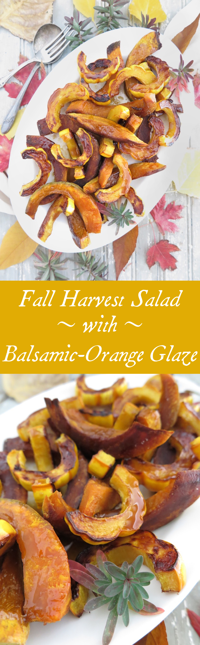 Fall Harvest Salad with Balsamic-Orange Glaze [Paleo - AIP] This side dish is so beautiful and so easy to make! With delicata squash and kabocha squash, this is the perfect complement to your Thanksgiving turkey!
