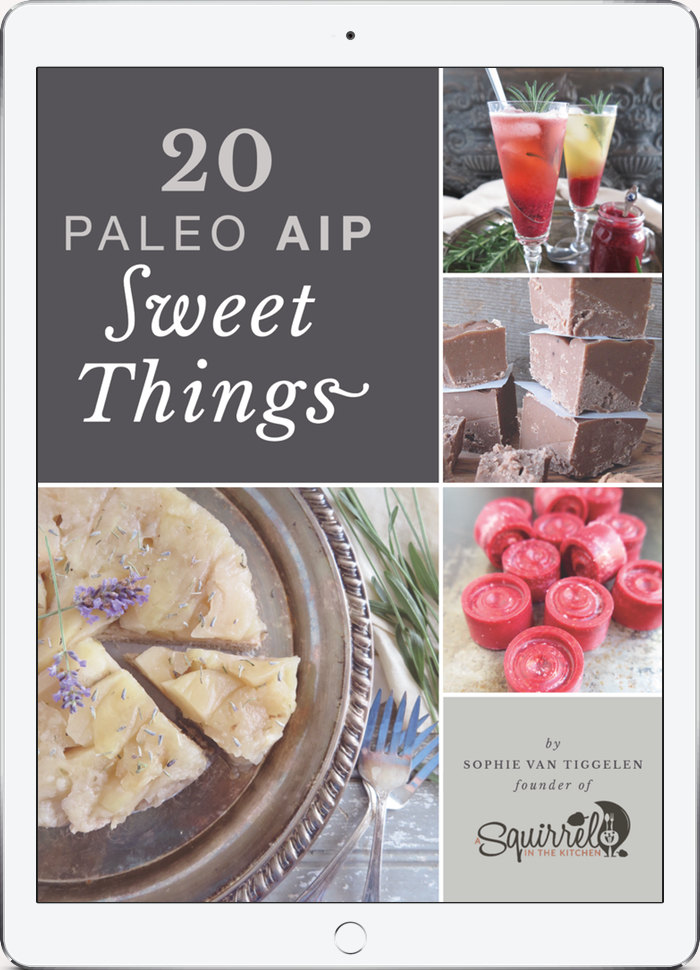 20 Paleo AIP Sweet Things ebook