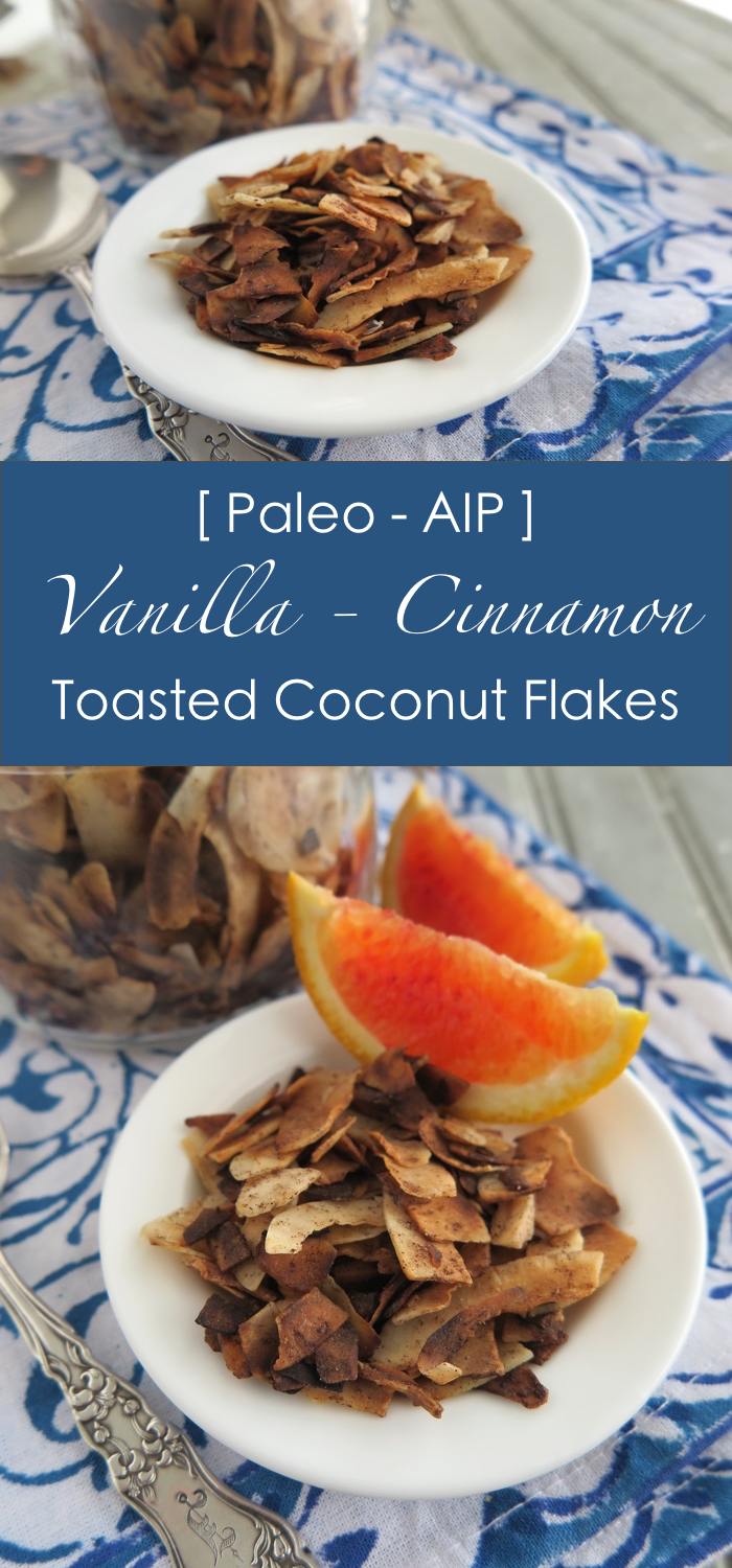 Vanilla-Cinnamon Toasted Coconut Flakes [ Paleo - AIP - Sugar-Free ]