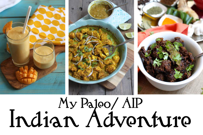 Giveaway of My Paleo/AIP Indian Adventure Cookbook